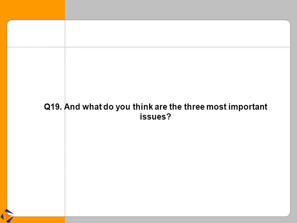 Q19. And what do you think are the three most important issues?
