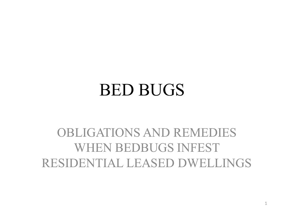 BED BUGS OBLIGATIONS AND REMEDIES WHEN BEDBUGS INFEST RESIDENTIAL LEASED DWELLINGS 1