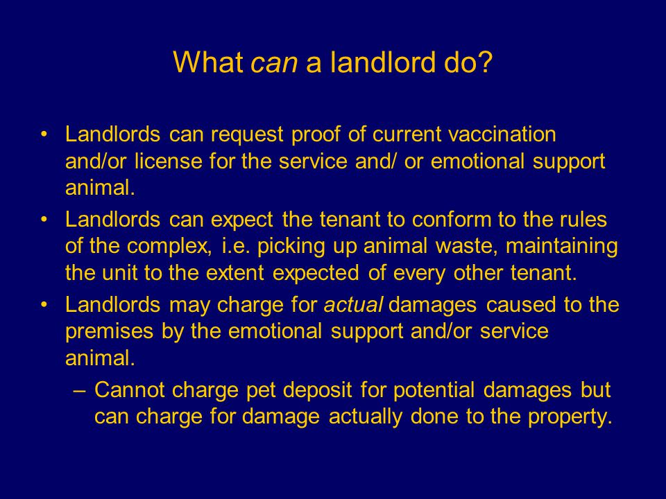 What can a landlord do.