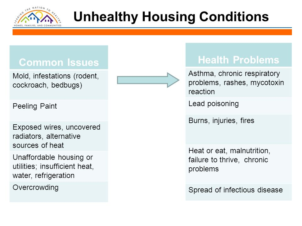 Reforming the Inspection System Centralized Inspections –Training inspectors to address all substandard housing conditions Interprofessional Inspection –Coordination between inspectors, organizers, health services professionals, and lawyers to improve housing and health of low-income tenants