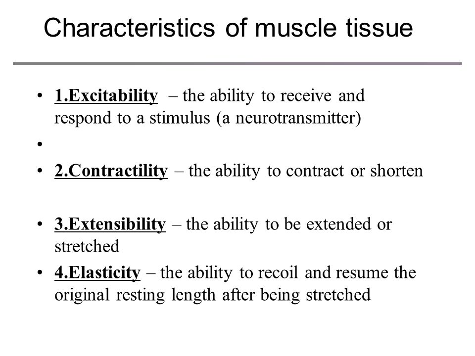 Functions of muscle contraction 1.Produce movement and Stabilize body positions 2. Regulate organ volume 3.Generate heat