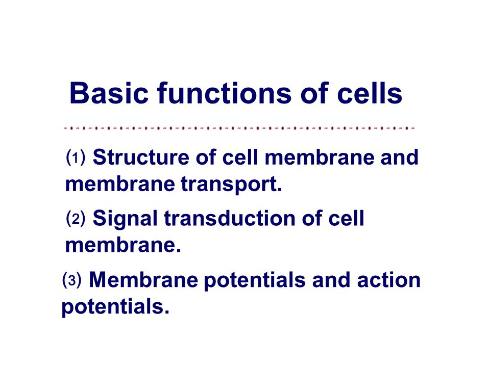 Instructor: Li Li Office: 0850 physiological sciences Email: tyvm80@163.com Jining medical college Basic functions of cells Department of Physiology