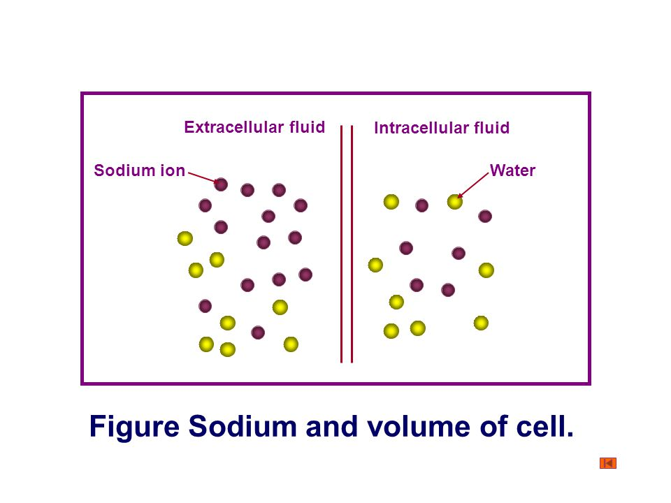 Figure Osmotic pressure and water movement.