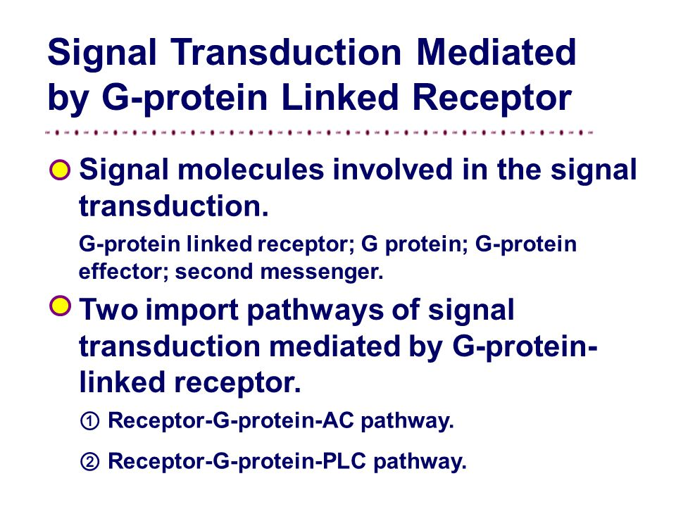 ⑵ Signal Transduction of Cell Membrane Signal transduction mediated by G-protein linked receptor. Signal transduction mediated by ionotropic receptor.
