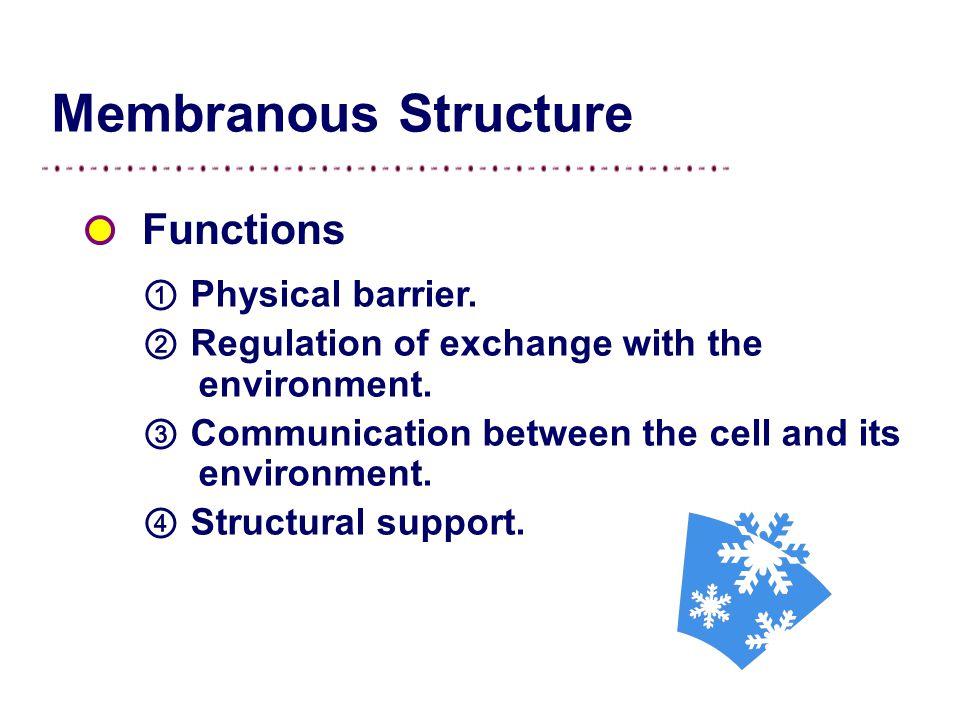 Figure Cell membrane.