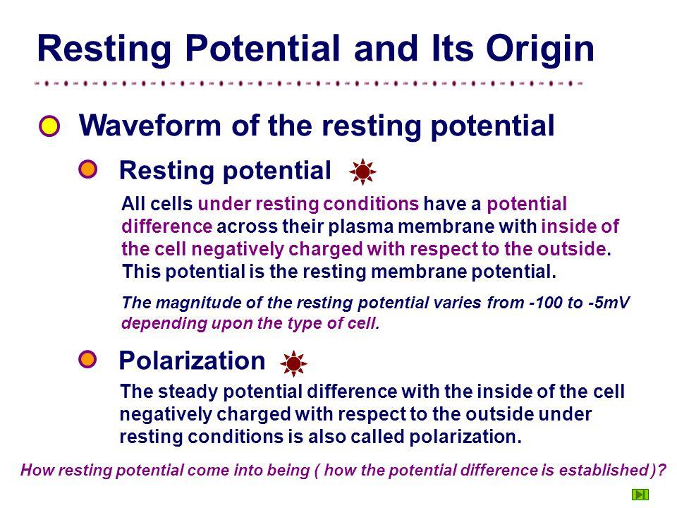 0 mV -60mV Nerve fiber RP Figure Measurement of resting potential. Experiment Intracellular recording indifferent recording electrode outside inside V