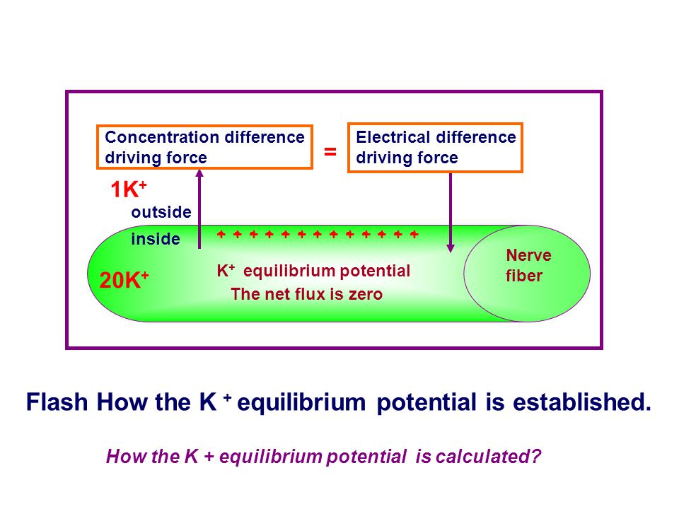 There are two driving force for ions diffusion: ① Concentration difference. ② Electrical potential difference. Electrochemical driving force Concentra