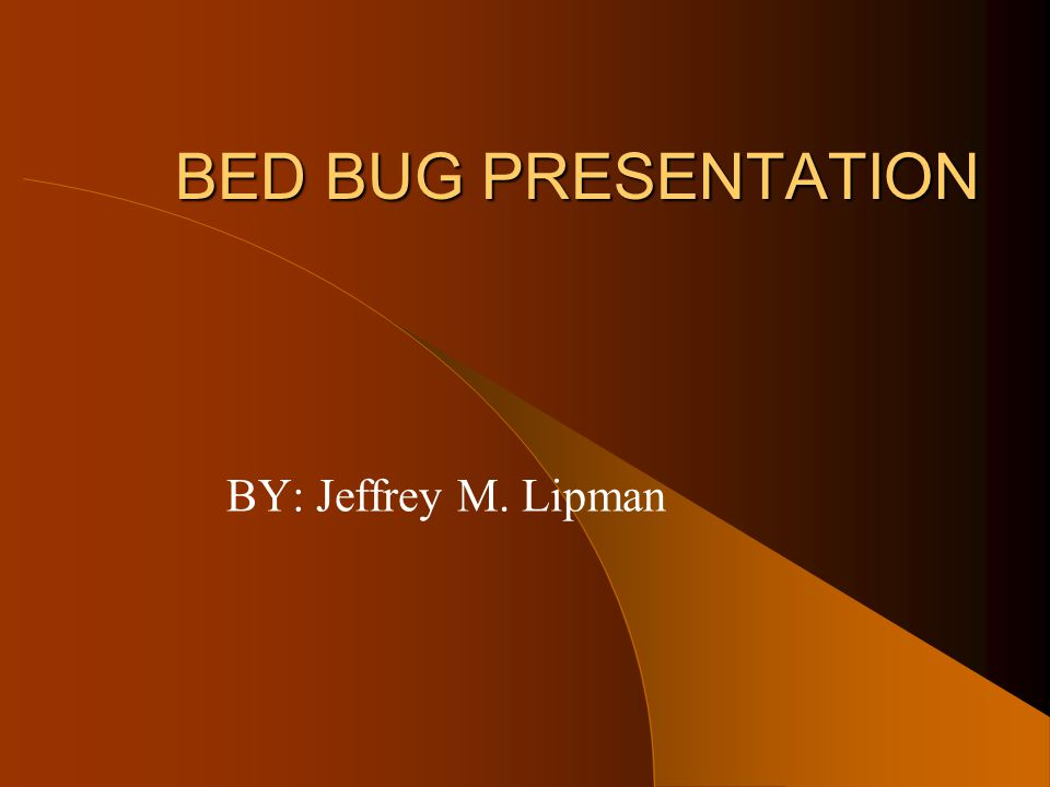BED BUG PRESENTATION BY: Jeffrey M. Lipman