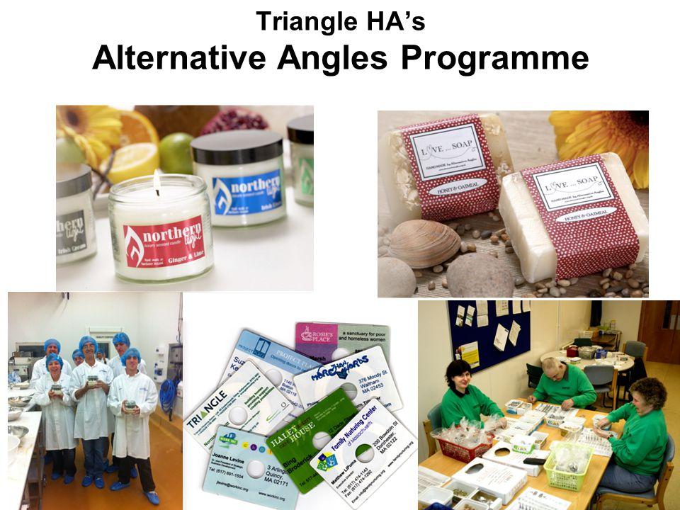 Triangle HA's Alternative Angles Programme