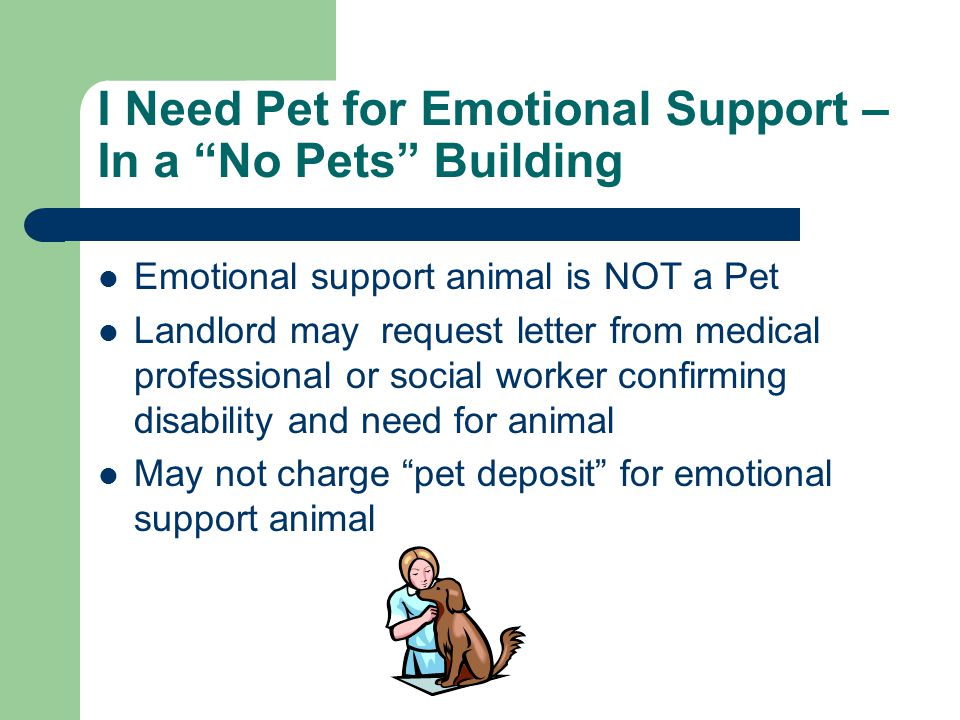I Need Pet for Emotional Support – In a No Pets Building Emotional support animal is NOT a Pet Landlord may request letter from medical professional or social worker confirming disability and need for animal May not charge pet deposit for emotional support animal