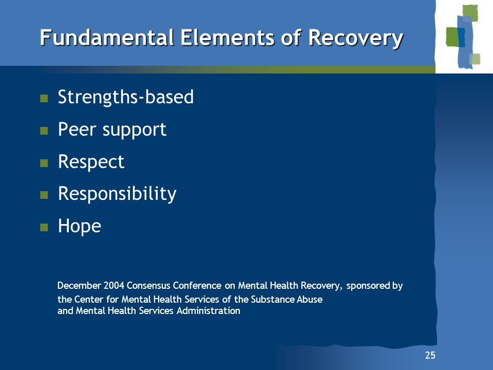 25 Fundamental Elements of Recovery n n Strengths-based n n Peer support n n Respect n n Responsibility n n Hope December 2004 Consensus Conference on