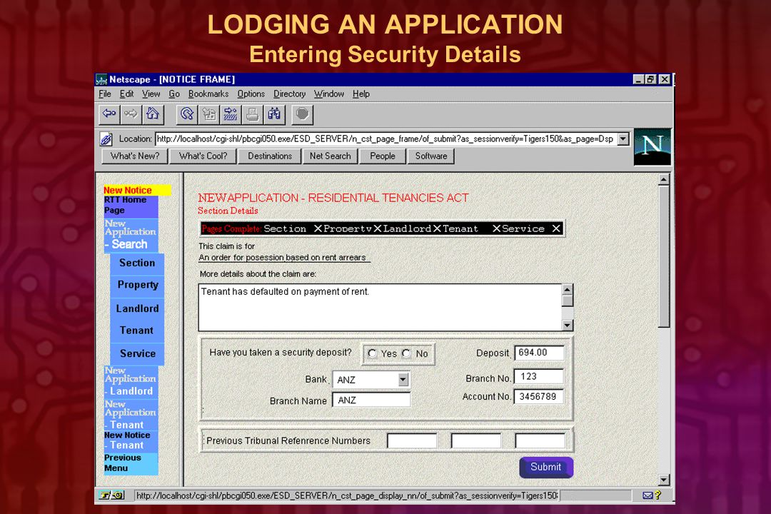 LODGING AN APPLICATION Entering Security Details