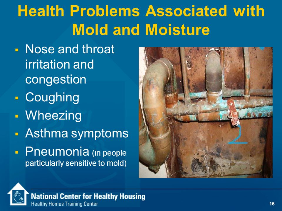 16 Health Problems Associated with Mold and Moisture  Nose and throat irritation and congestion  Coughing  Wheezing  Asthma symptoms  Pneumonia (