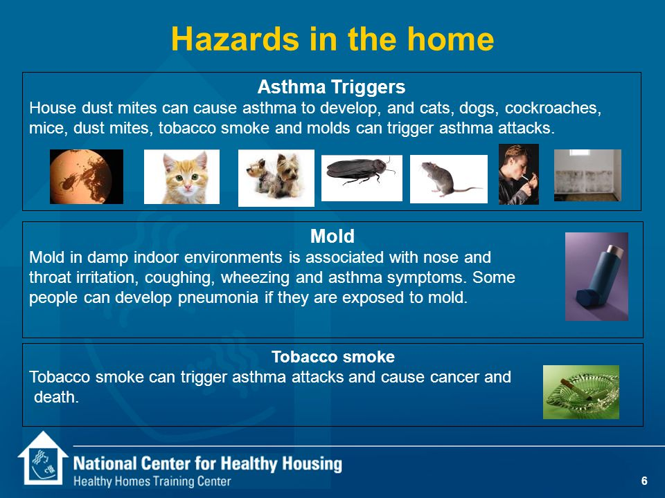 6 Hazards in the home Asthma Triggers House dust mites can cause asthma to develop, and cats, dogs, cockroaches, mice, dust mites, tobacco smoke and m