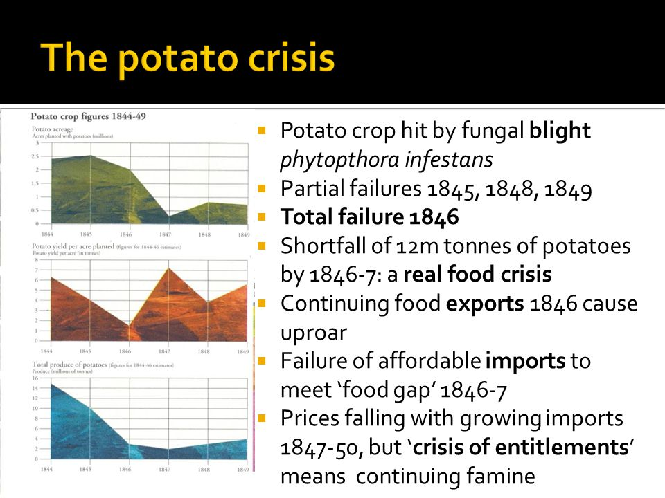  Potato crop hit by fungal blight phytopthora infestans  Partial failures 1845, 1848, 1849  Total failure 1846  Shortfall of 12m tonnes of potatoes by 1846-7: a real food crisis  Continuing food exports 1846 cause uproar  Failure of affordable imports to meet 'food gap' 1846-7  Prices falling with growing imports 1847-50, but 'crisis of entitlements' means continuing famine