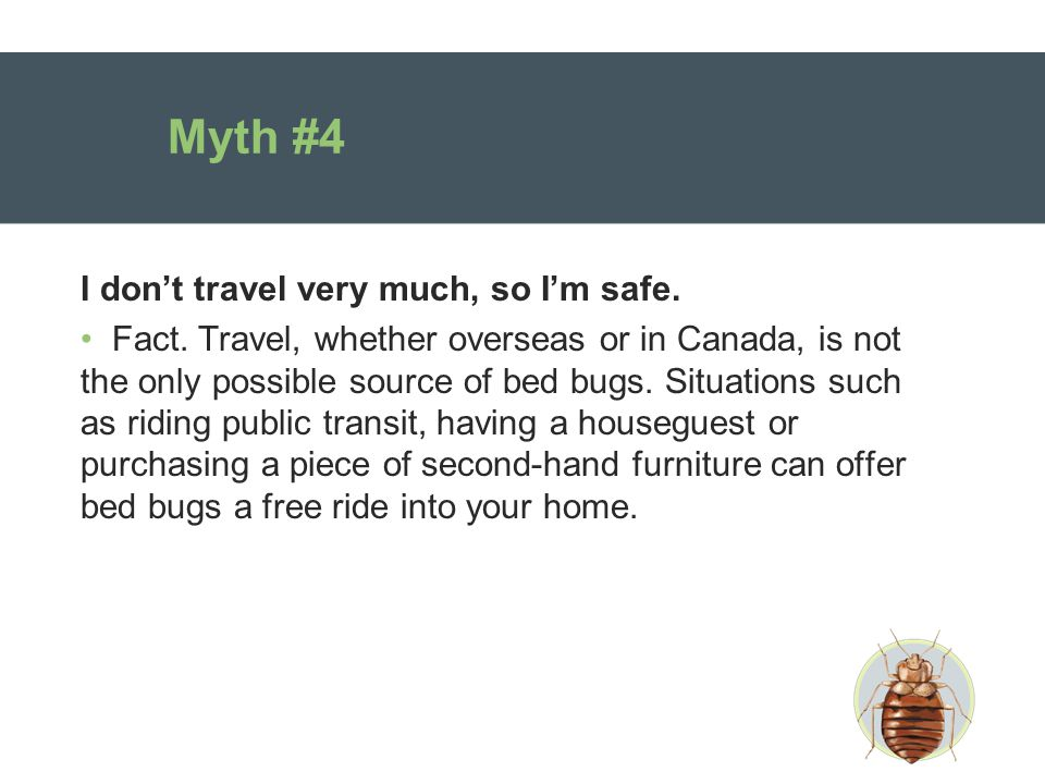 Myth #4 I don't travel very much, so I'm safe. Fact.