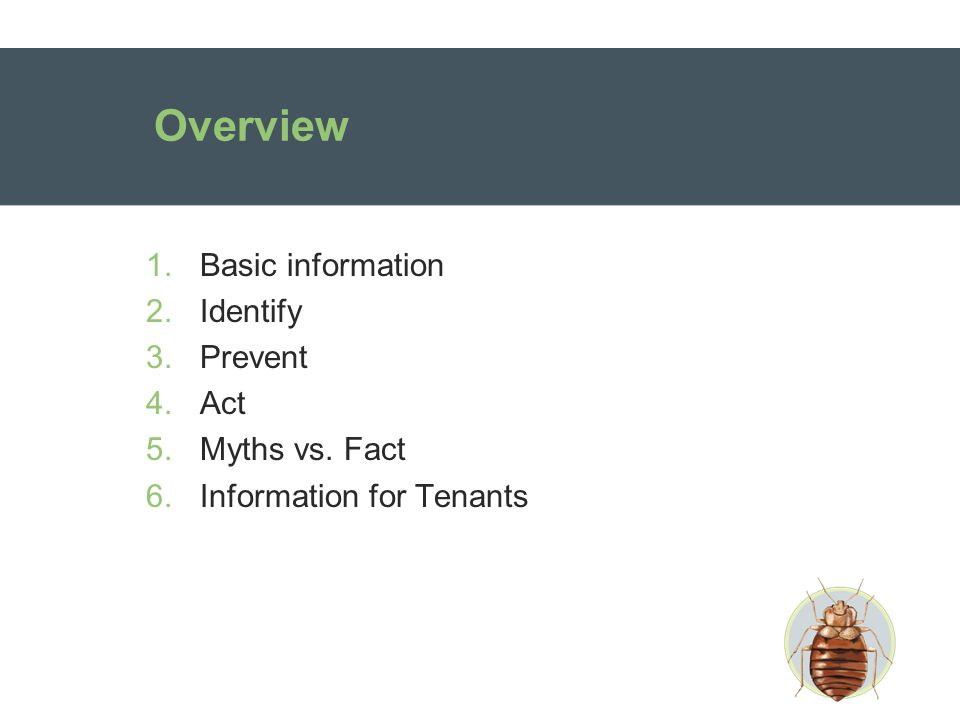 Overview 1.Basic information 2.Identify 3.Prevent 4.Act 5.Myths vs. Fact 6.Information for Tenants