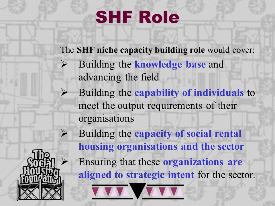 SHF Role The SHF niche capacity building role would cover:  Building the knowledge base and advancing the field  Building the capability of individu