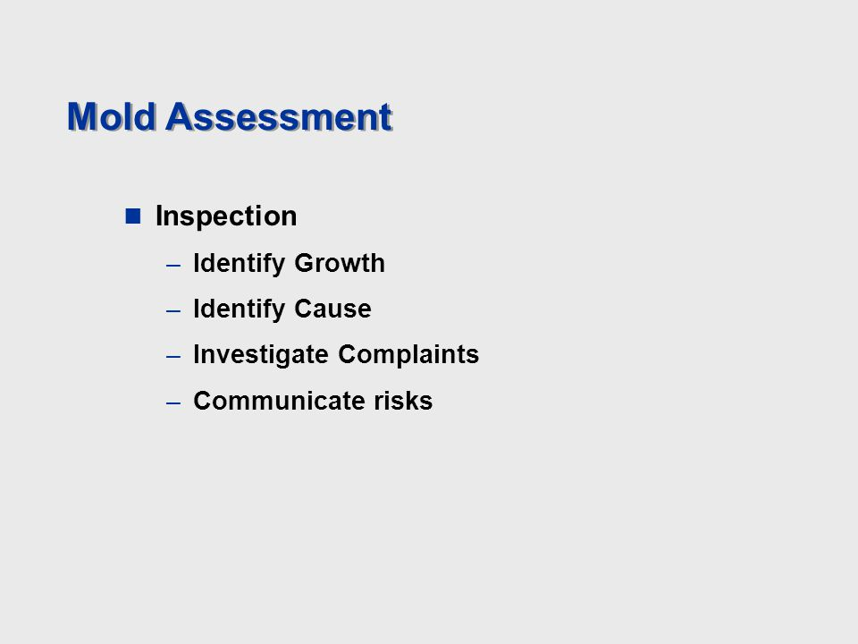 Mold Assessment Inspection –Identify Growth –Identify Cause –Investigate Complaints –Communicate risks