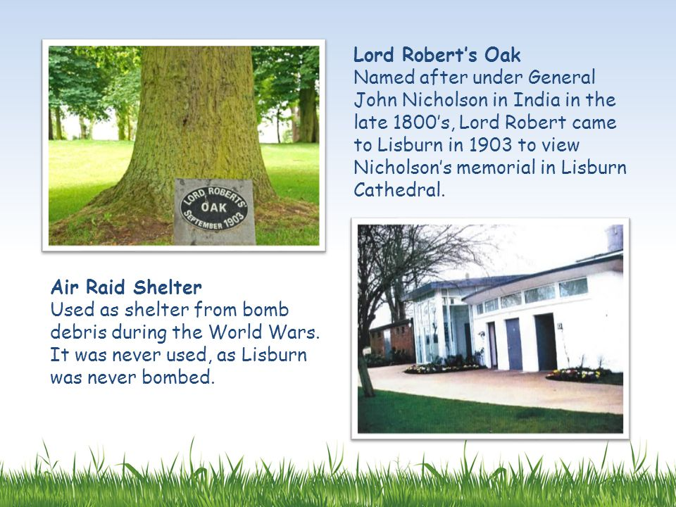 Lord Robert's Oak Named after under General John Nicholson in India in the late 1800's, Lord Robert came to Lisburn in 1903 to view Nicholson's memori