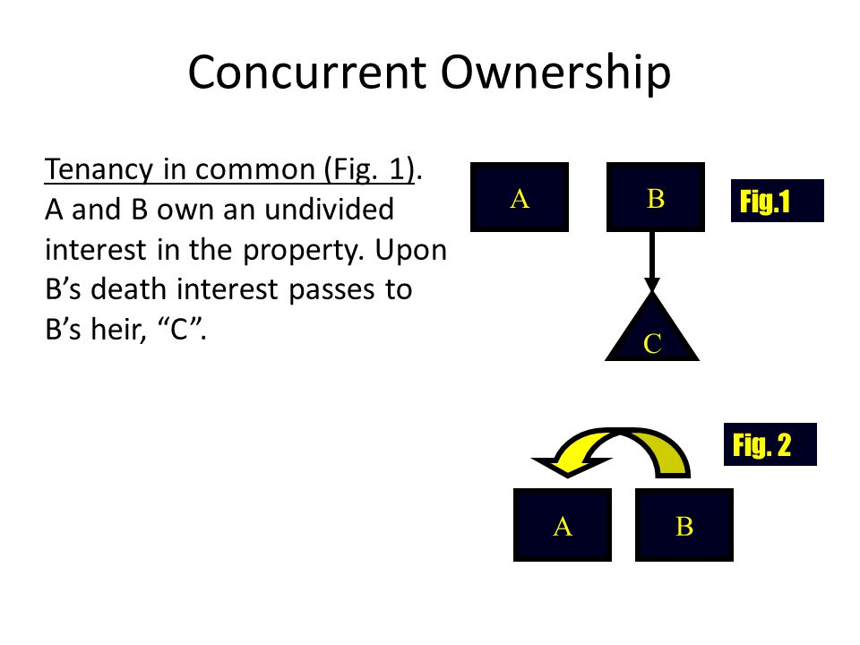 Concurrent Ownership Tenancy in common (Fig.1). A and B own an undivided interest in the property.