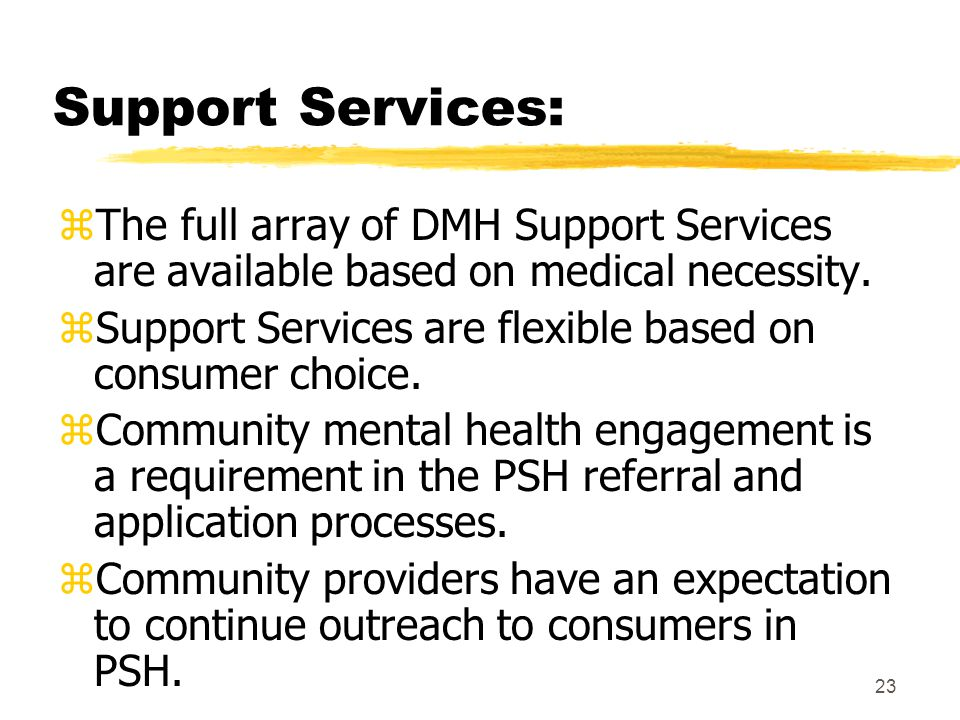 23 Support Services: zThe full array of DMH Support Services are available based on medical necessity.