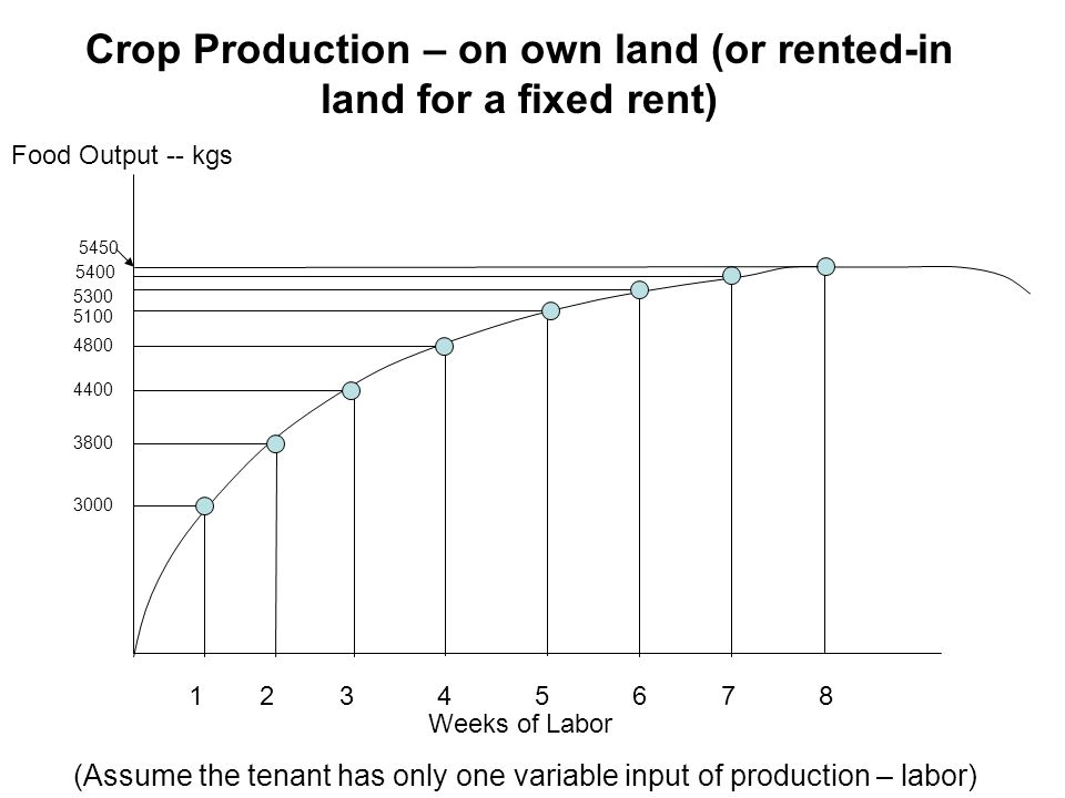 Crop Production – on own land (or rented-in land for a fixed rent) Food Output -- kgs Weeks of Labor 12345678 3000 5400 5300 5100 4800 4400 3800 (Assu