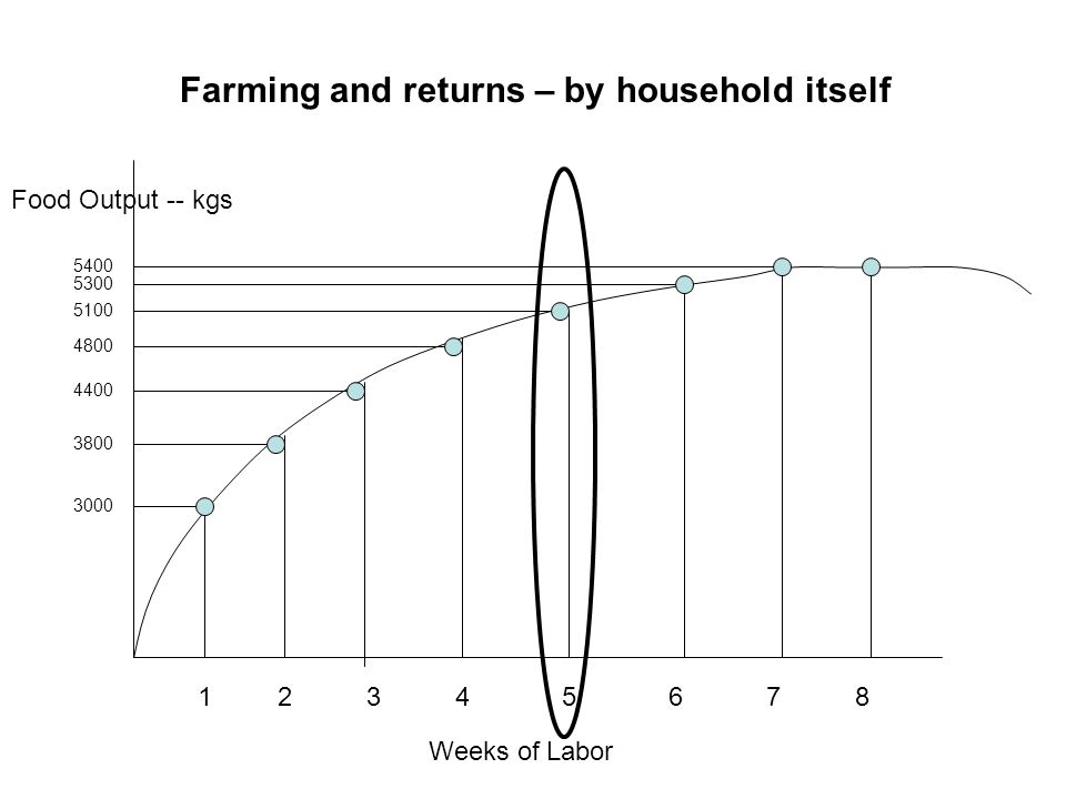 Farming and returns – by household itself Food Output -- kgs Weeks of Labor 12345678 3000 5400 5300 5100 4800 4400 3800
