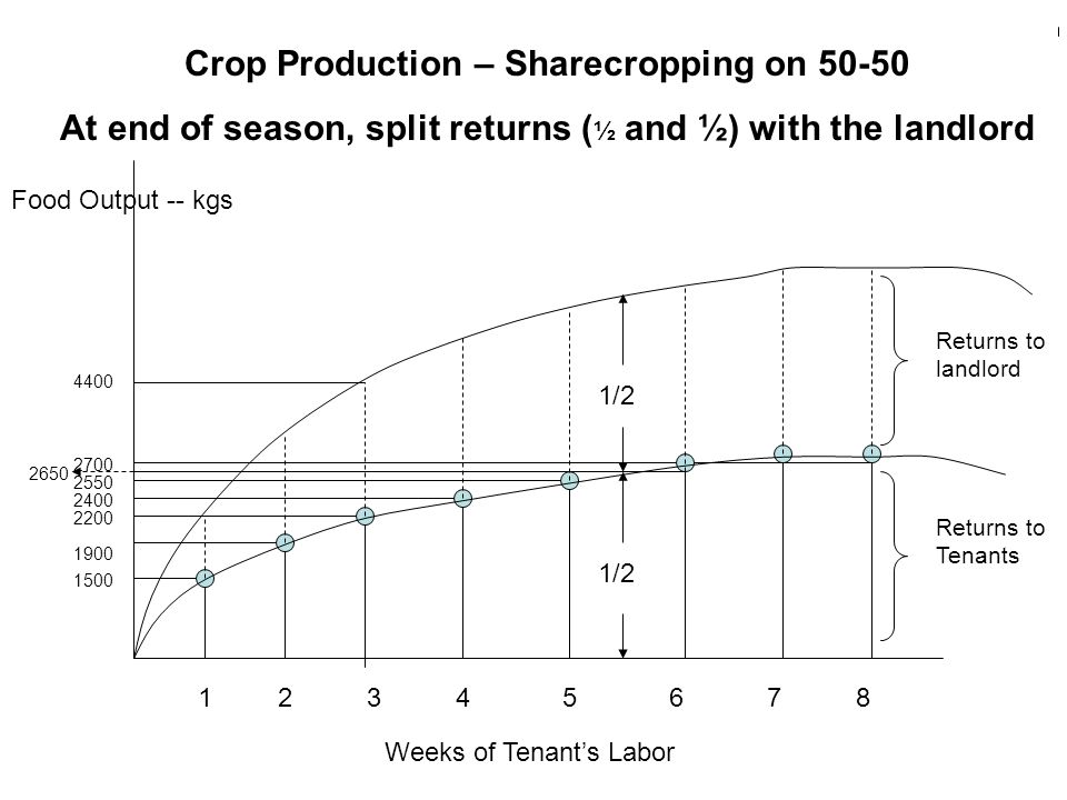 Crop Production – Sharecropping on 50-50 At end of season, split returns ( ½ and ½) with the landlord Food Output -- kgs Weeks of Tenant's Labor 12345