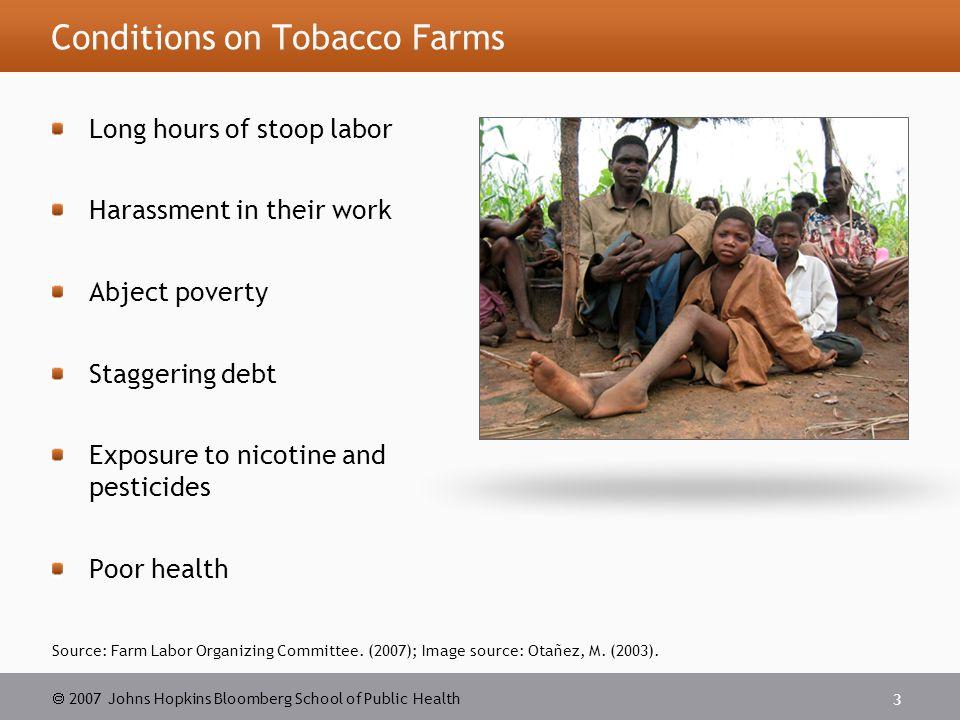  2007 Johns Hopkins Bloomberg School of Public Health 4 Image source: Otañez, M.