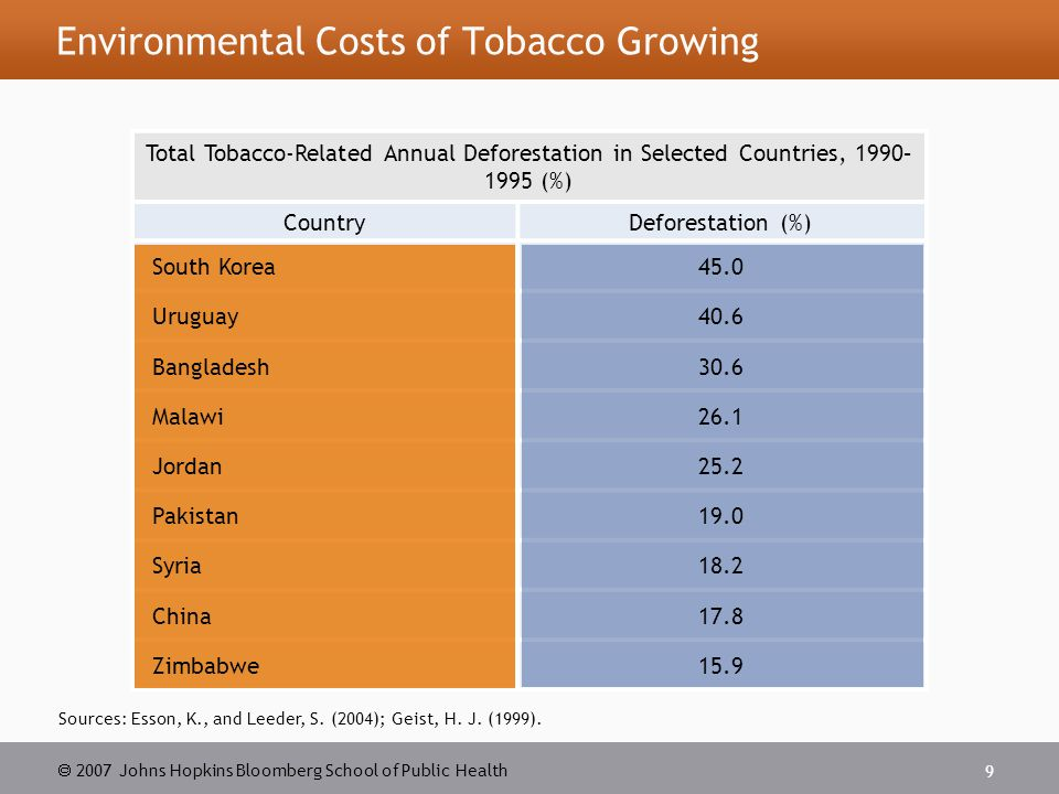  2007 Johns Hopkins Bloomberg School of Public Health 10 Video: Tobacco Farming and Deforestation About 15% of Malawi s tobacco is flue-cured, a type of leaf processed in brick barns in which hot air heats up the barn.