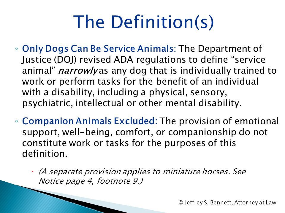 """SECTION II: The ADA Definition of """"Service Animal"""" © Jeffrey S. Bennett, Attorney at Law"""