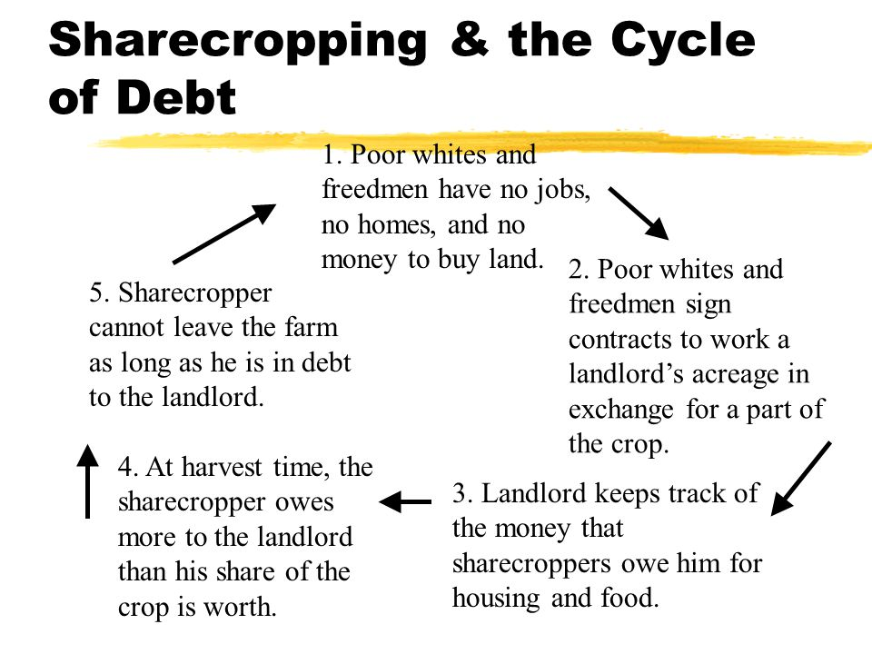 Effects on the South zLabor force: Before the war, 90% of cotton was harvested by slave; After the war, white laborers picked 40% of the crop zCash crops were grown  South had to import much of its food zHomestead Act of 1866: attempted to break the cycle of debt by offering low- cost land to southerners (white & black).