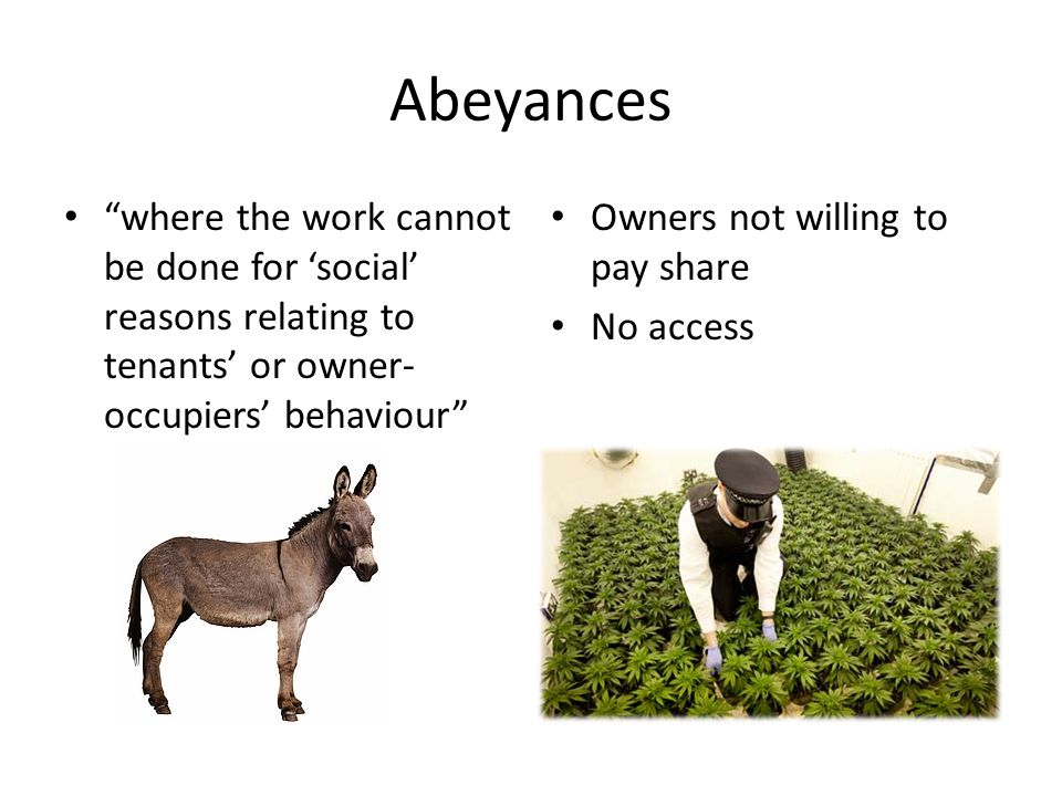 where the work cannot be done for 'social' reasons relating to tenants' or owner- occupiers' behaviour Owners not willing to pay share No access