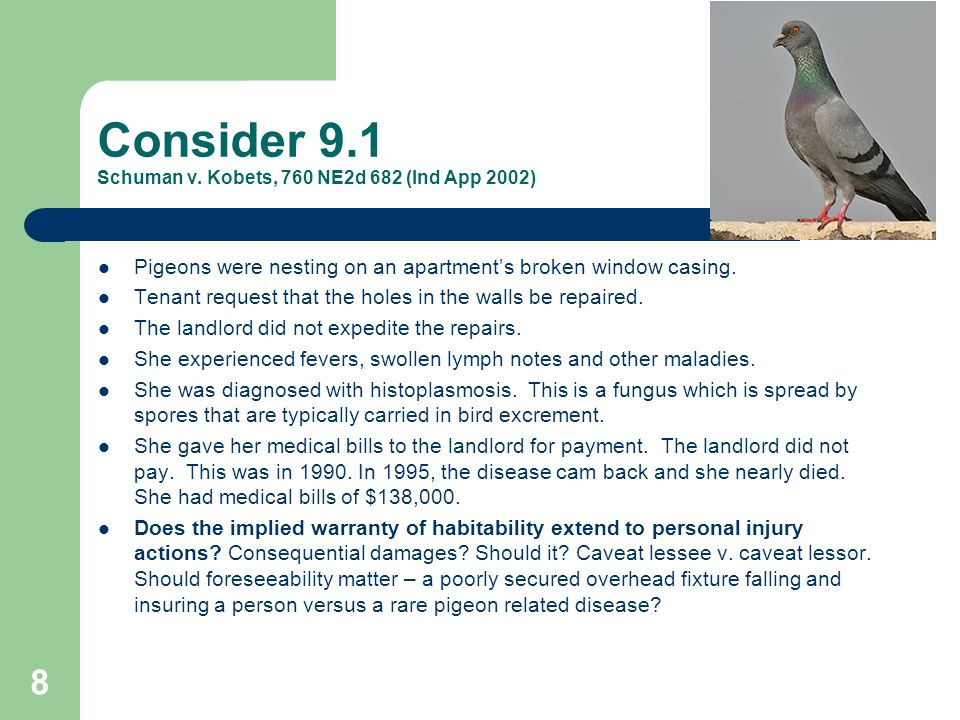 Consider 9.1 Schuman v. Kobets, 760 NE2d 682 (Ind App 2002) Pigeons were nesting on an apartment's broken window casing. Tenant request that the holes