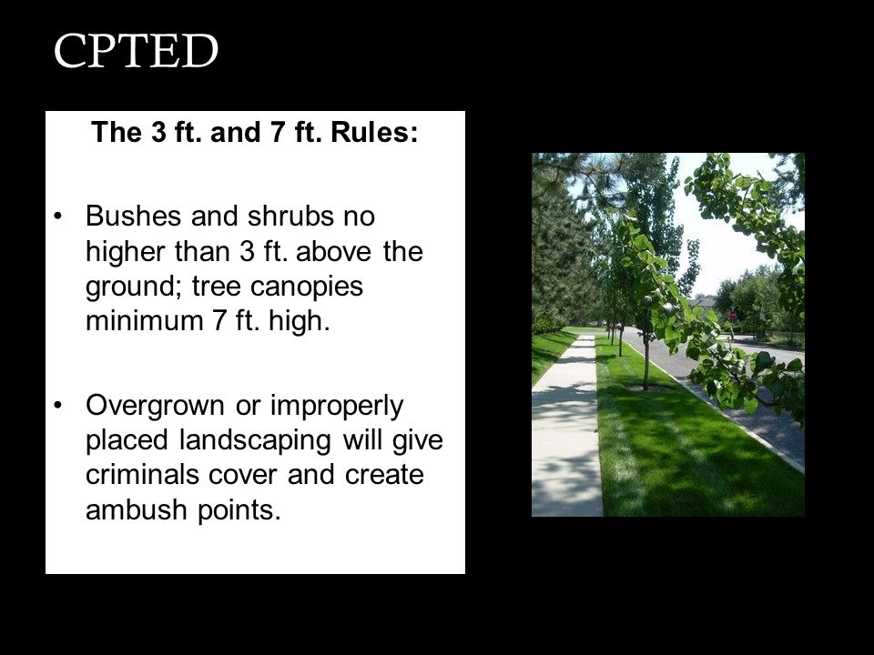 CPTED The 3 ft. and 7 ft. Rules: Bushes and shrubs no higher than 3 ft. above the ground; tree canopies minimum 7 ft. high. Overgrown or improperly pl