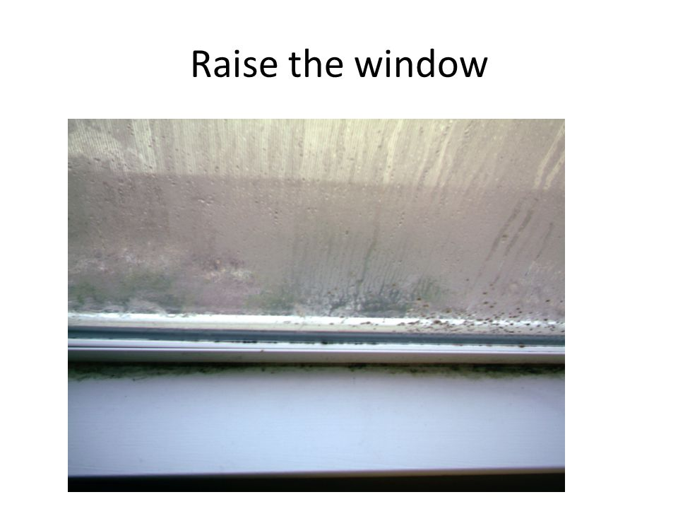 Raise the window