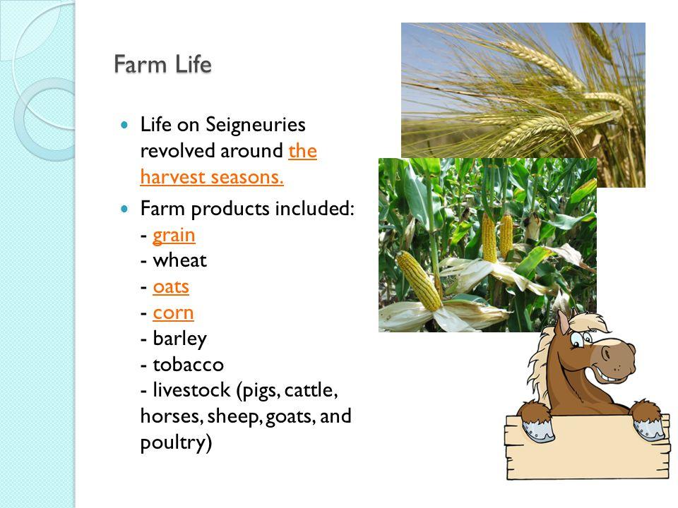 Farm Life Life on Seigneuries revolved around the harvest seasons.