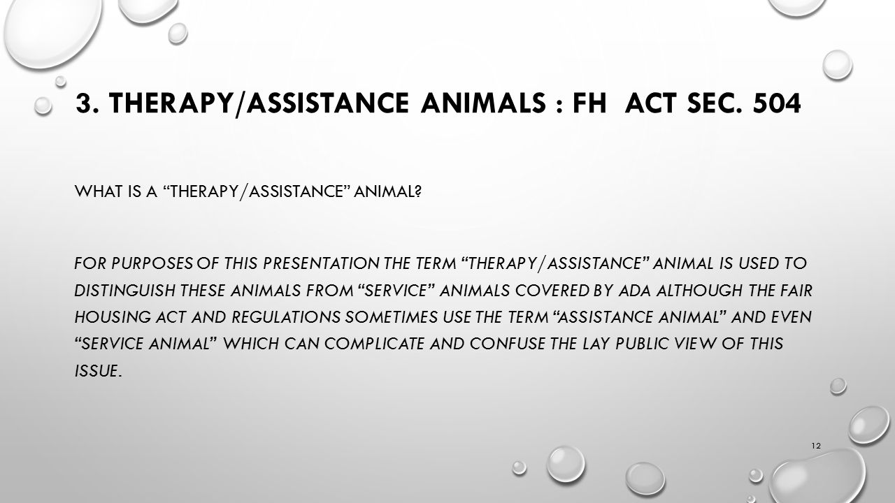 3. THERAPY/ASSISTANCE ANIMALS : FH ACT SEC. 504 WHAT IS A THERAPY/ASSISTANCE ANIMAL.