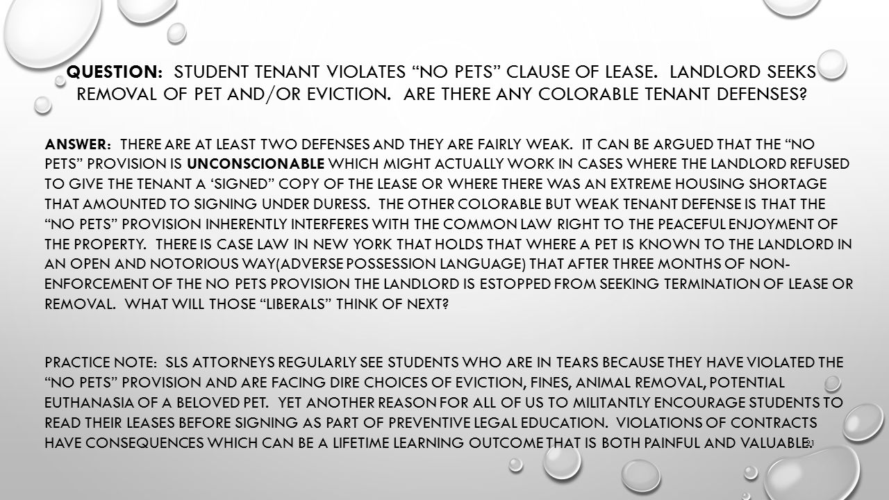 QUESTION: STUDENT TENANT VIOLATES NO PETS CLAUSE OF LEASE.