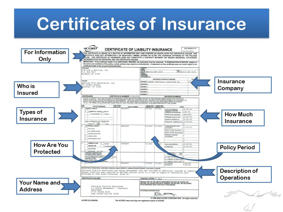 For Information Only Who is Insured Insurance Company How Much Insurance Types of Insurance How Are You Protected Description of Operations Your Name and Address Policy Period Certificates of Insurance