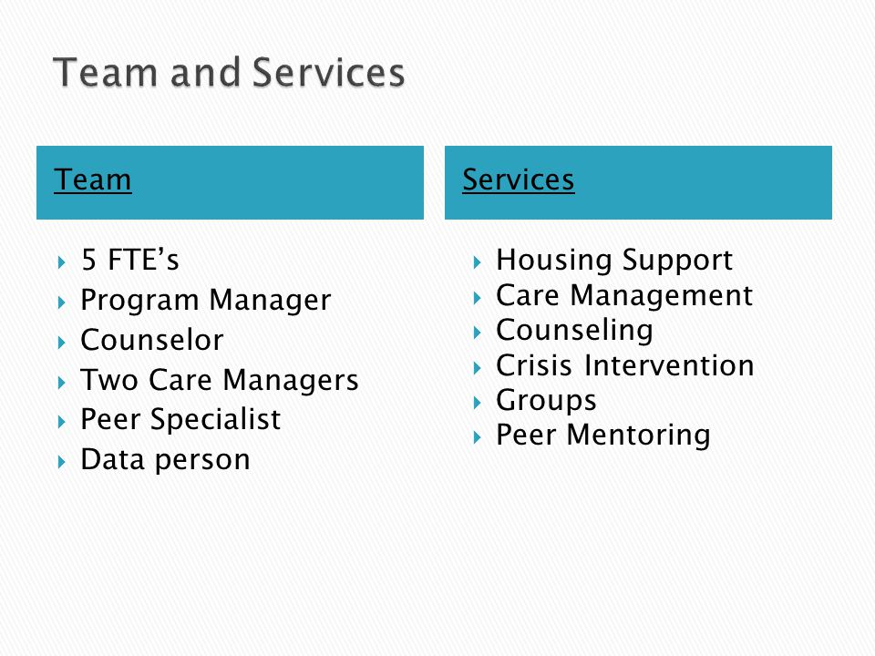 TeamServices  5 FTE's  Program Manager  Counselor  Two Care Managers  Peer Specialist  Data person  Housing Support  Care Management  Counseling  Crisis Intervention  Groups  Peer Mentoring
