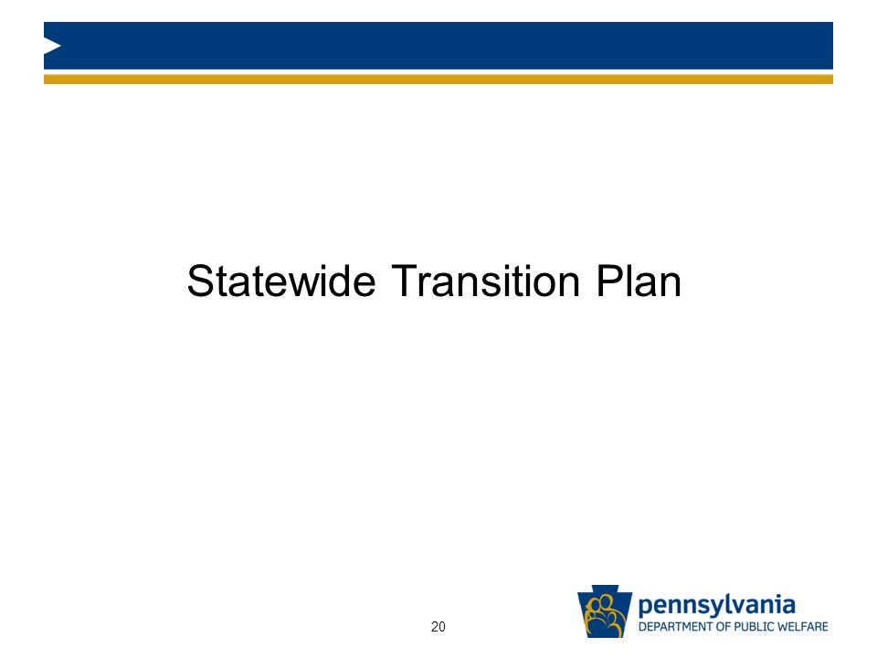 Statewide Transition Plan 20