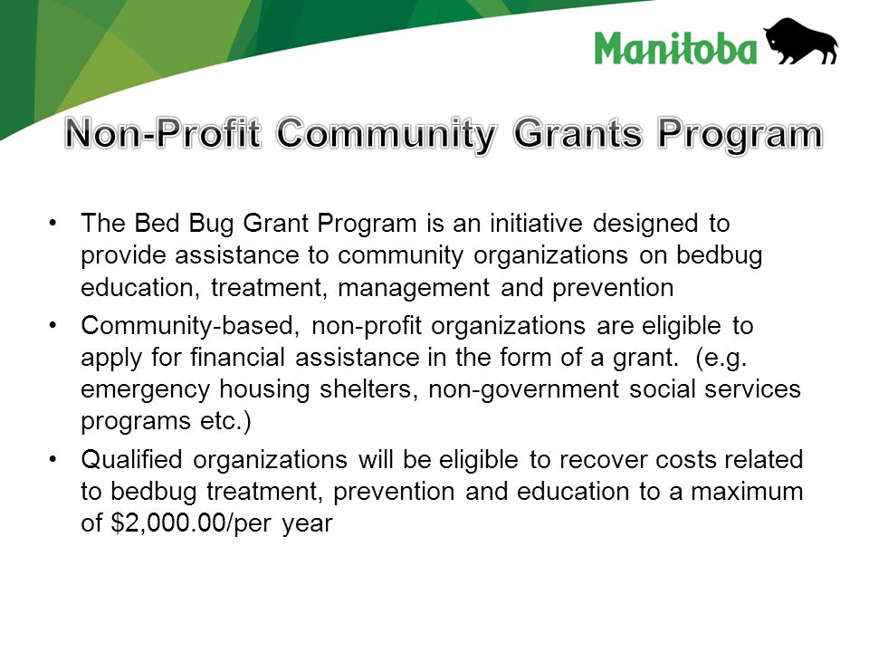 What types of bedbug treatment, prevention and education activities are eligible for grant funding.