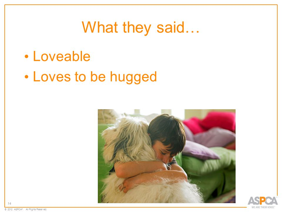 14 © 2012 ASPCA ®. All Rights Reserved. What they said… Loveable Loves to be hugged