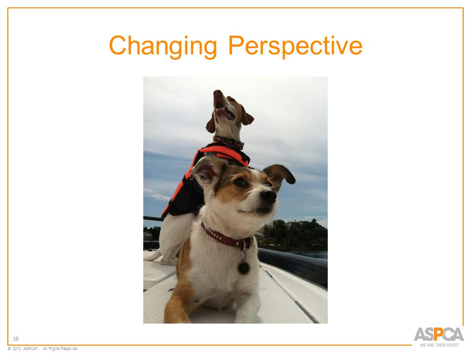 35 © 2012 ASPCA ®. All Rights Reserved. Changing Perspective