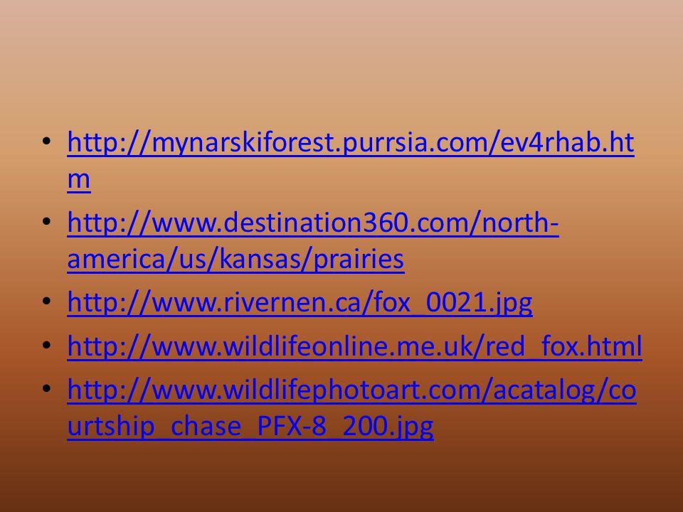 http://mynarskiforest.purrsia.com/ev4rhab.ht m http://mynarskiforest.purrsia.com/ev4rhab.ht m http://www.destination360.com/north- america/us/kansas/prairies http://www.destination360.com/north- america/us/kansas/prairies http://www.rivernen.ca/fox_0021.jpg http://www.wildlifeonline.me.uk/red_fox.html http://www.wildlifephotoart.com/acatalog/co urtship_chase_PFX-8_200.jpg http://www.wildlifephotoart.com/acatalog/co urtship_chase_PFX-8_200.jpg