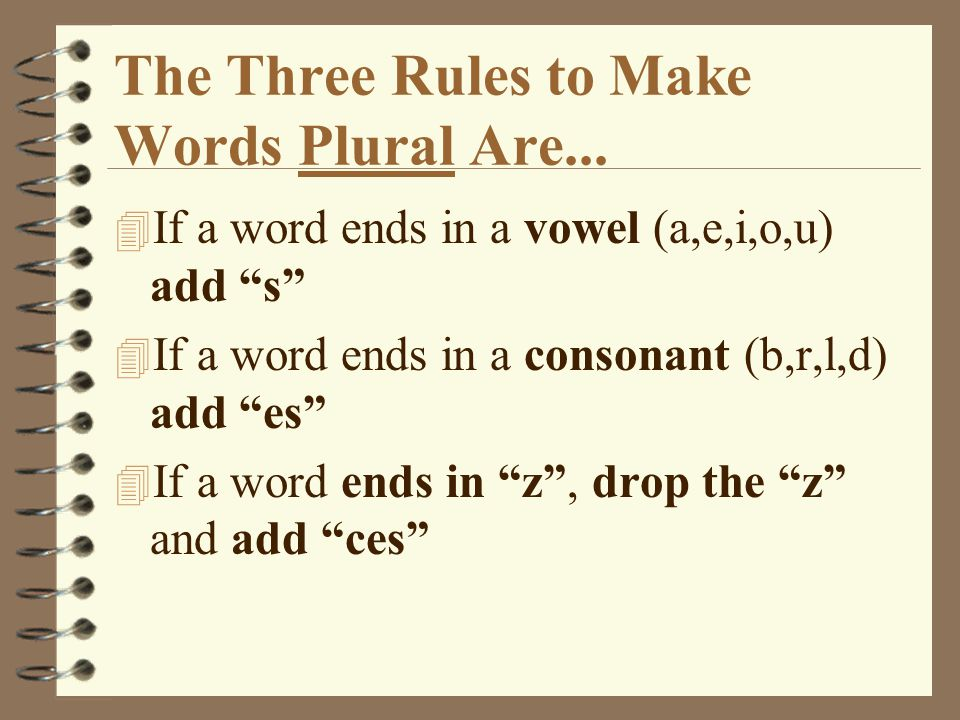 The Three Rules to Make Words Plural Are...