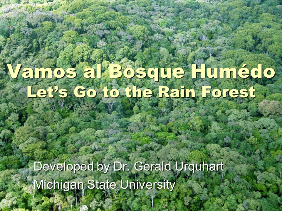 Vamos al Bosque Humédo Let's Go to the Rain Forest Developed by Dr.