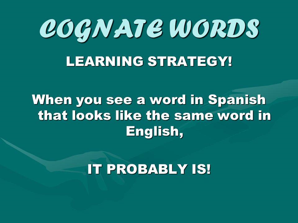 COGNATE WORDS TRY SOME EXAMPLES El elefante usa la computadora.